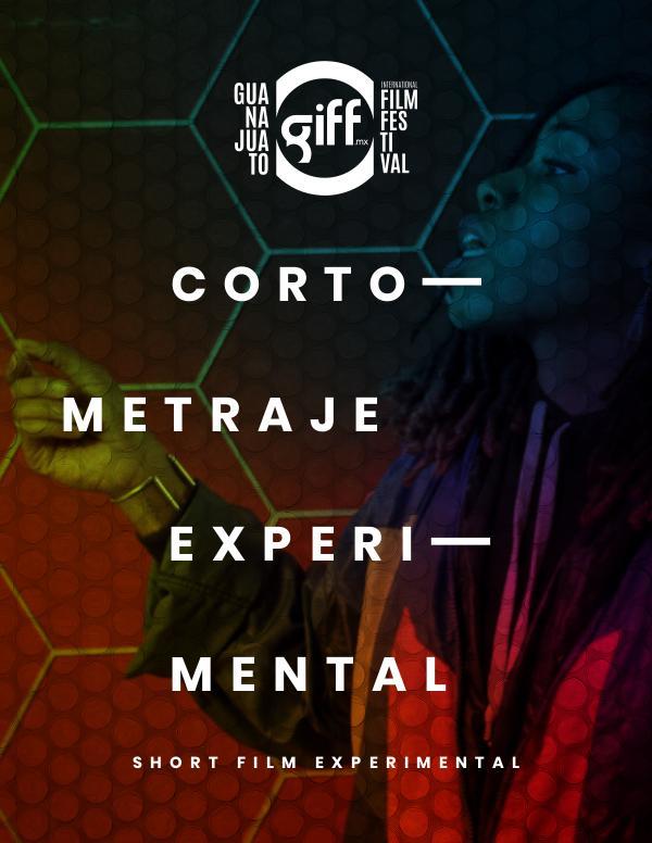 Catálogo General GIFF 2019 S. O. Cortometraje Experimental