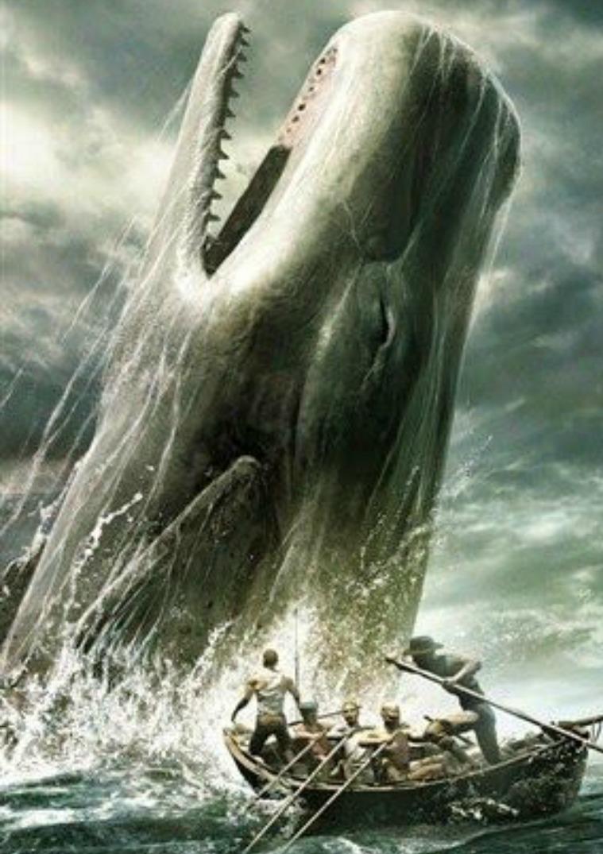 Mi primera publicacion revista ballenas mueren por contaminación