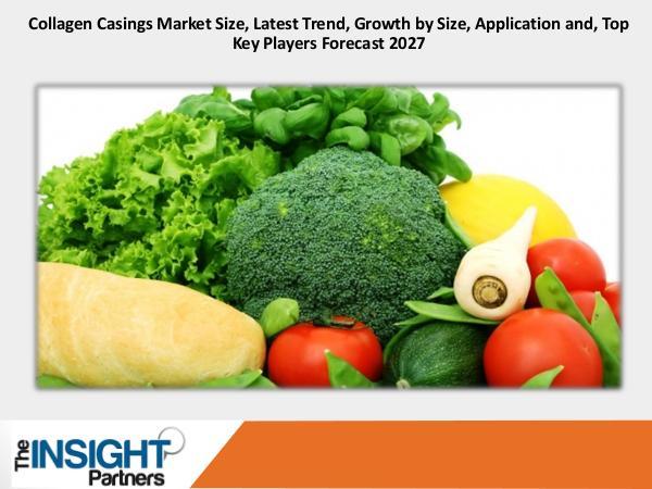 Collagen Casings Market