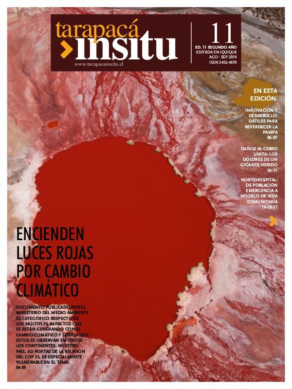 Revista Tarapacá Insitu Edición 11