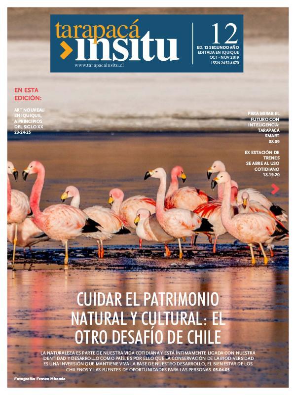 Revista Tarapacá Insitu Edición 12