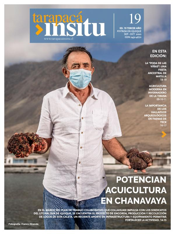 Revista Tarapacá Insitu Edición 19