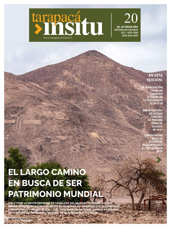 Revista Tarapacá Insitu 20