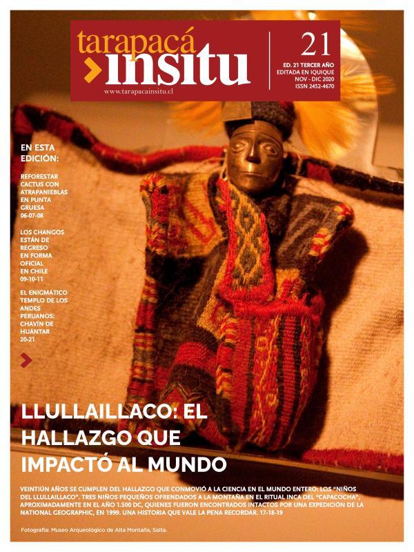 Revista Tarapacá Insitu 21