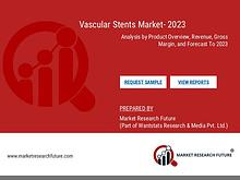 Vascular stents market Analysis by Product Overview