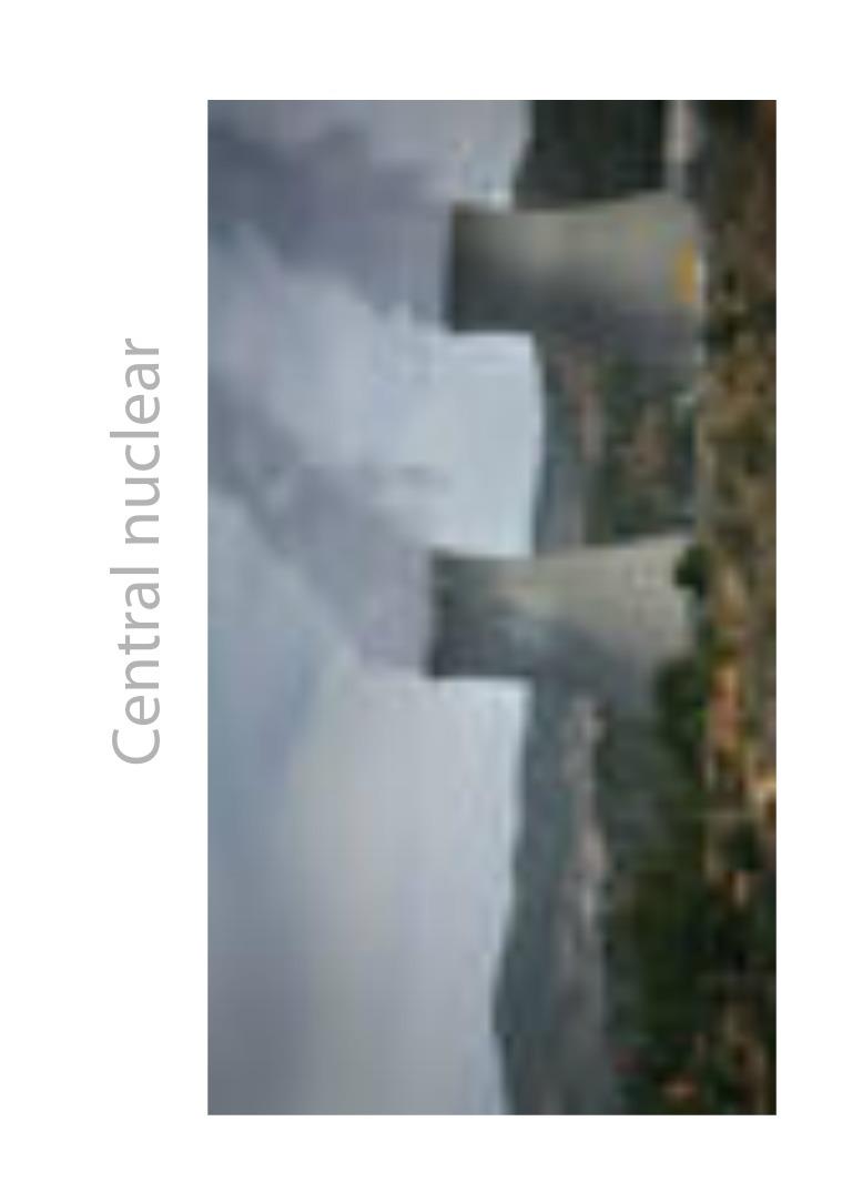 Central Nuclear CENTRAL NUCLEARUna central térmica nuclear o plant