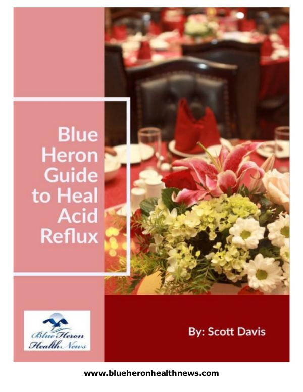 The Acid Reflux Strategy PDF Free Download: Scott Davis Scott Davis