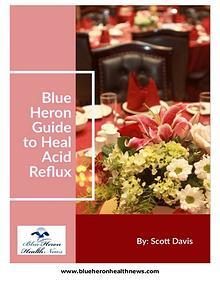 The Acid Reflux Strategy PDF Free Download: Scott Davis