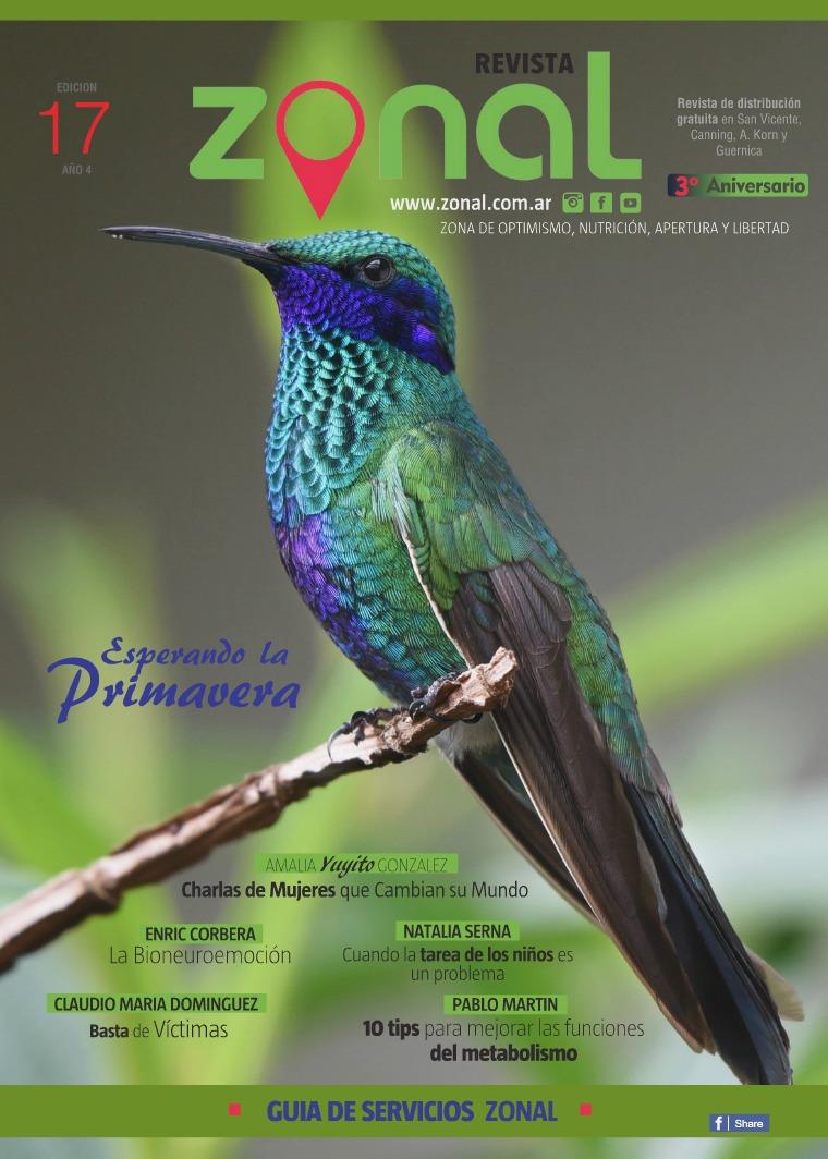 Revista Zonal Edición Nº17