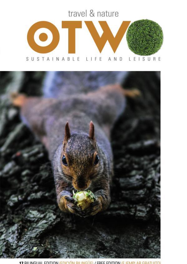 OTWO Magazine December 2020