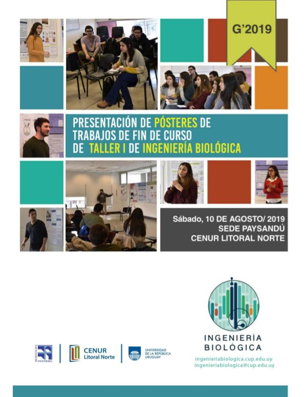 Pósteres de trabajo de fin de curso de la asignatura Taller 1 - 2019