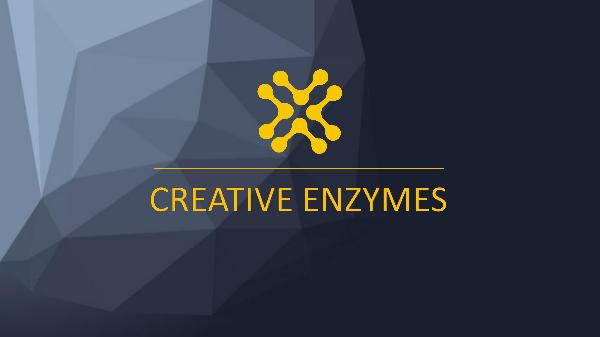 Creative Enzymes product Creative Enzymes