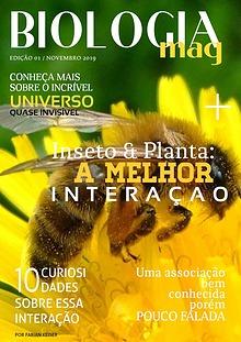 Minha primeira publicação