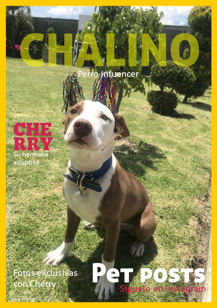 Chalino43s Chalino43s