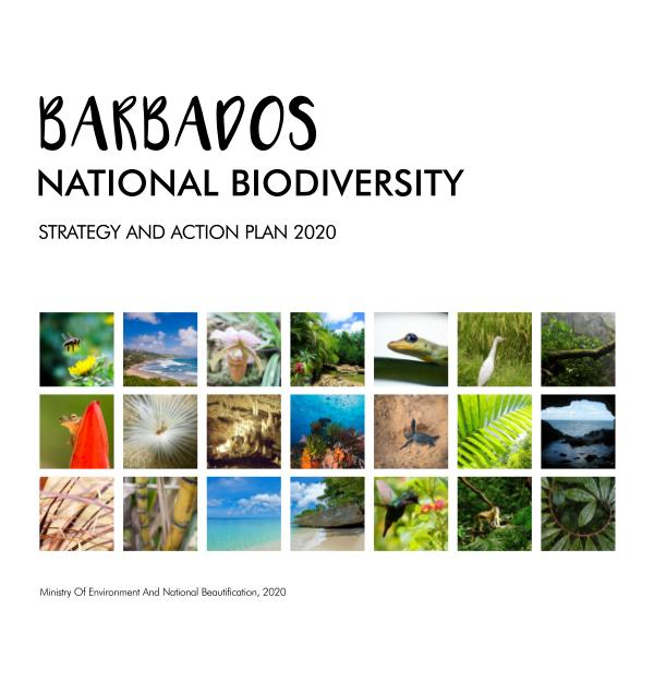 NBSAP BOOKLET 2020 TEST BdosNationalBiodiversityStrategyPlan-MinsEnviron&D