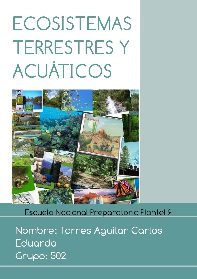 Actividad 8, Biología, Torres Aguilar Carlos Eduardo. 1