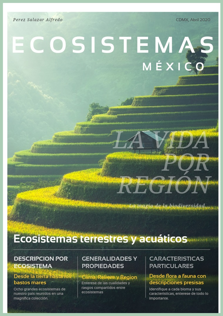 Tipos de Ecosistemas Tipos de ecosistemas