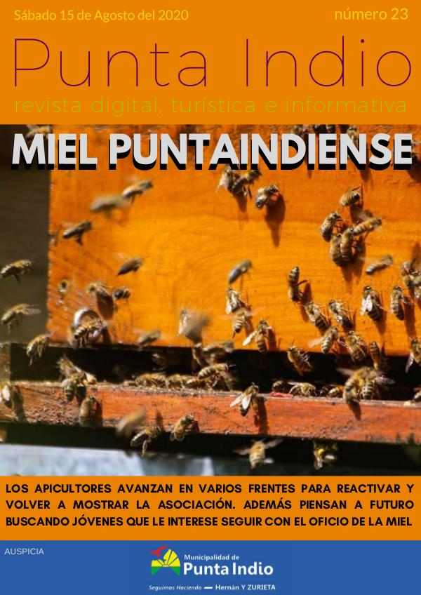 Revista Punta Indio