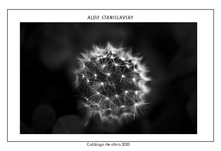 Aldo Stanislavsky. Catálogo de obra
