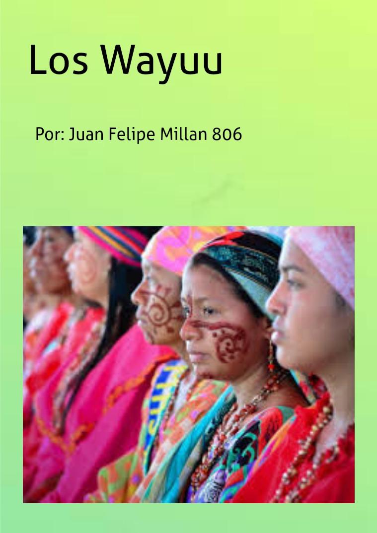 Juan Felipe Millan Bulla 806