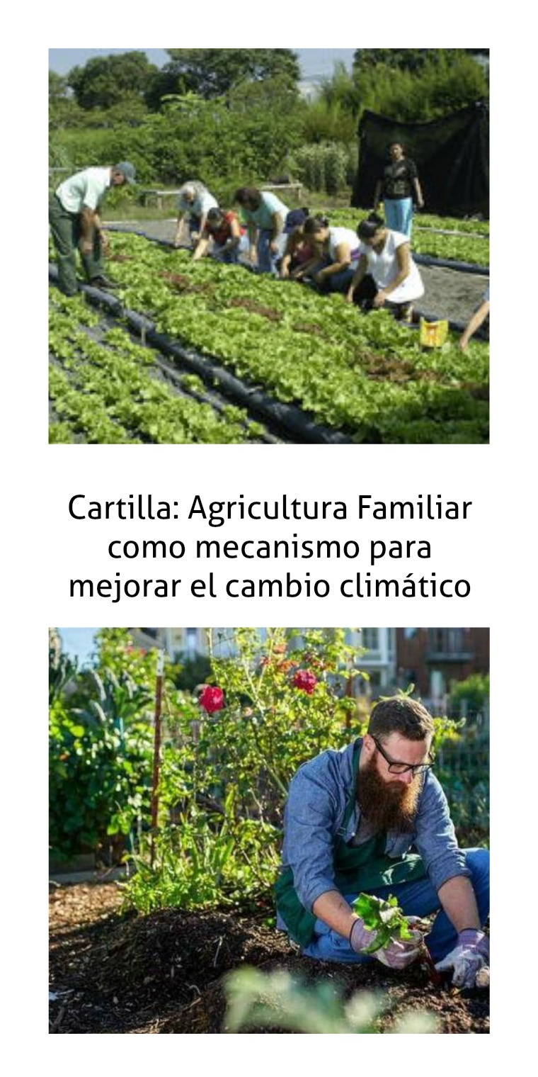 sobre agricultura familiar
