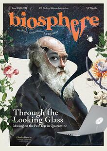 BIOSPHERE: Through the Looking Glass
